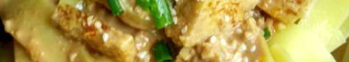 Mix di piatti dello 陕西 Shaanxi, del 新疆 Xinjiang e di altre regioni